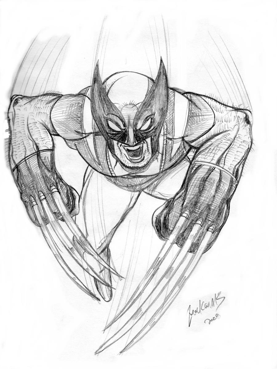Free Sketch- Wolverine by NickMockoviak