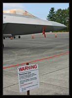 F-22, Deadly Force Authorized by oOBrieOo