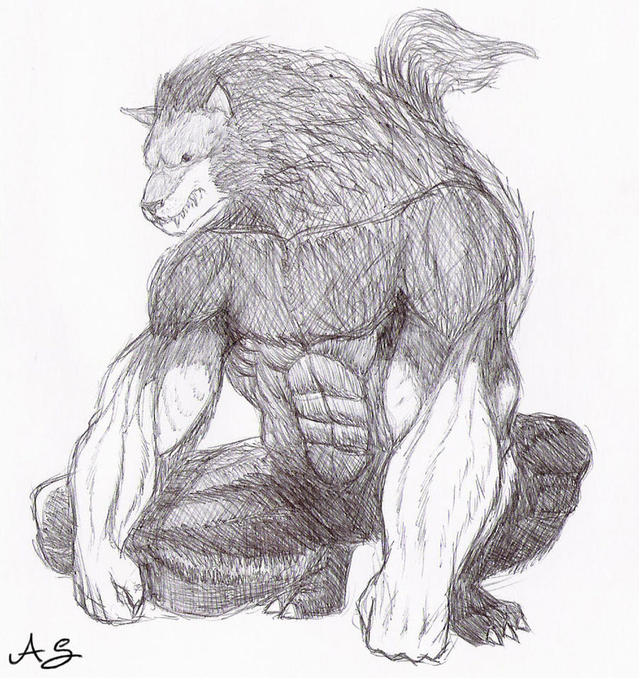 werewolf sketch-schizzomannaro by AndreaSchepisi