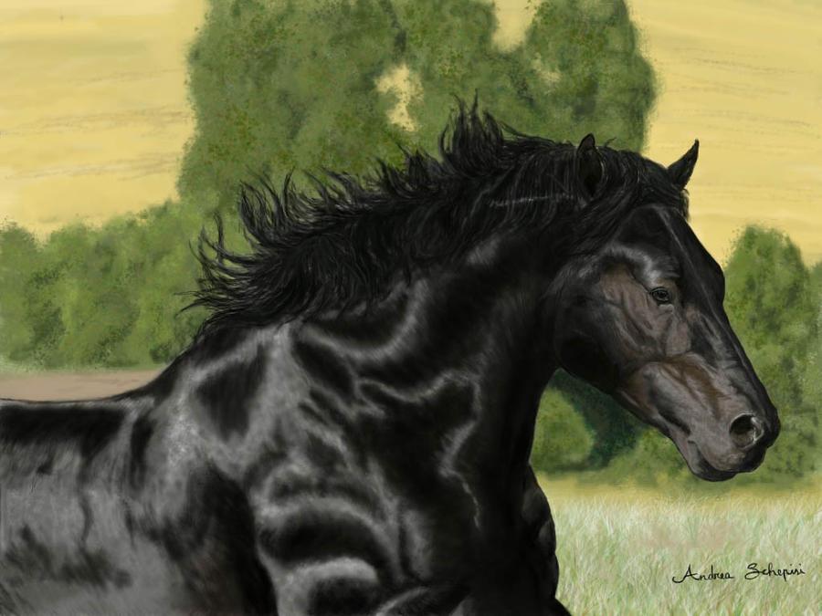 Percheron horse photoshop by AndreaSchepisi