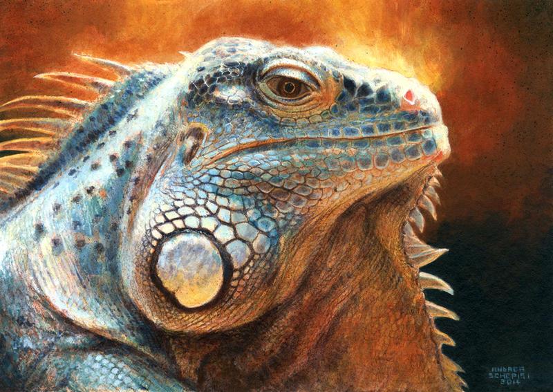 Iguana - acrylic study by AndreaSchepisi