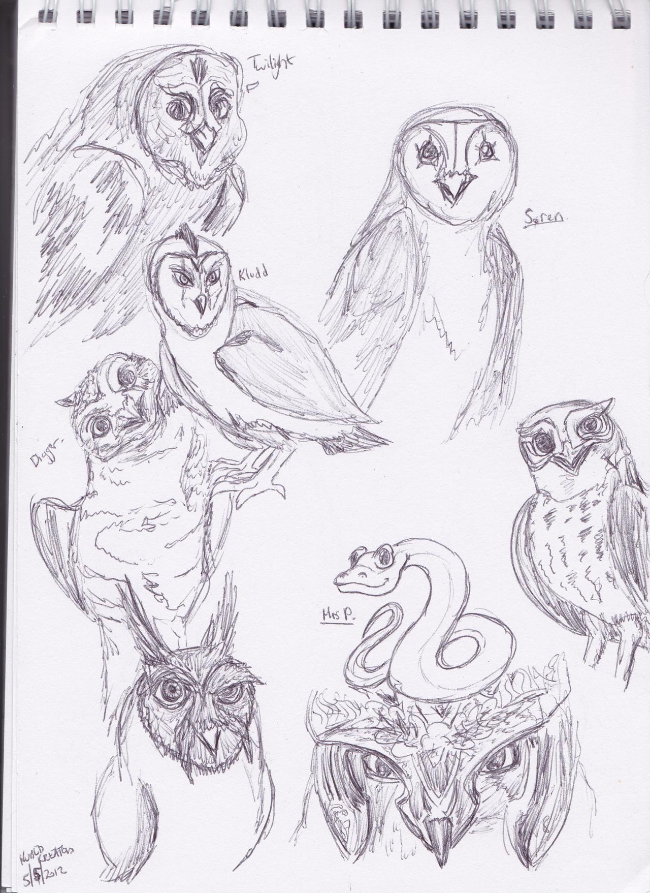 owls of ga u0027hoole sketches by dragon princess08 on deviantart