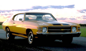 A Muscle Car on the rise