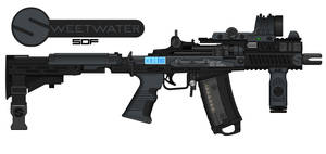 SPW - SOF - ACC (Assault Compact Carbine)