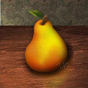 Paintshop Pro and Photoshop by vivage