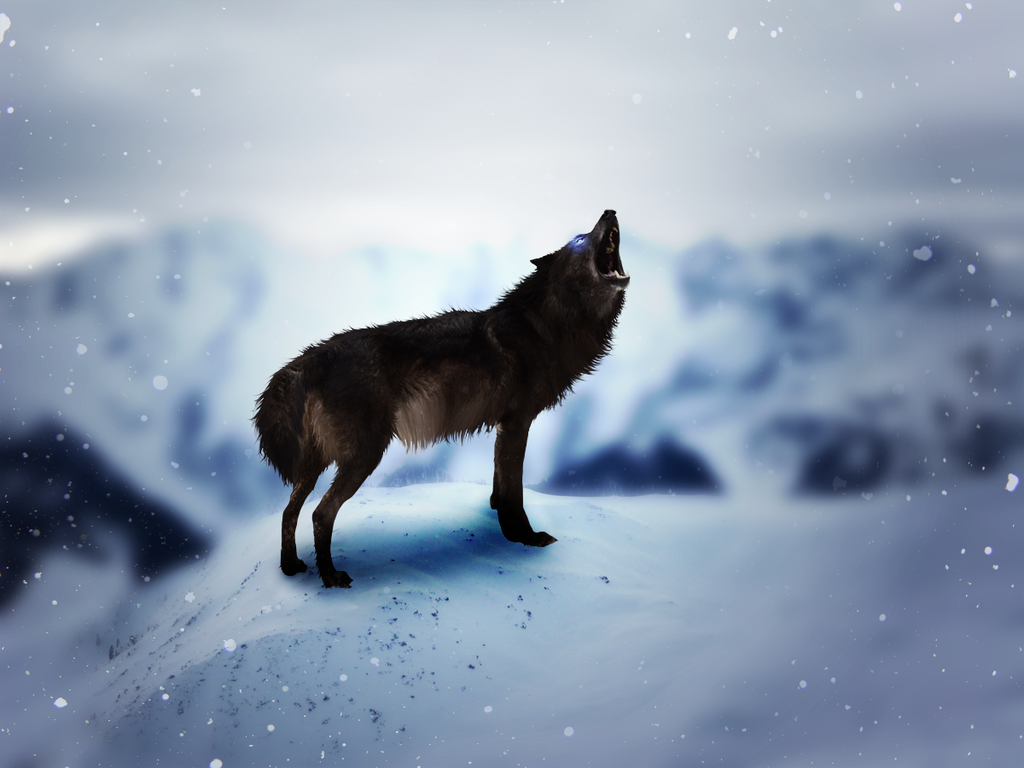 Ice Heart by Yellwolf