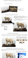 Yellwolfs short Photomanipulation tutorial
