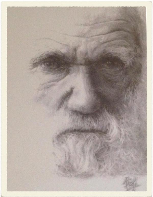 Charles Darwin [shot of copy of my drawing] by artbyrichy