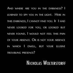 Nicholas Wolterstorff
