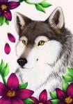 In wilderness blooms the spirit