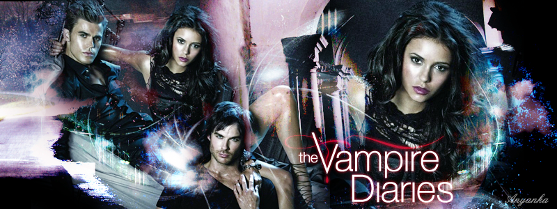 Pareri/Sugestii. The_vampire_diaries_banner_3_by_theanyanka-d2yf1ly