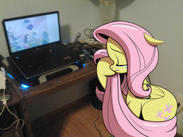 (PIRl) Fluttershy crying because some people don't by hypershadic247