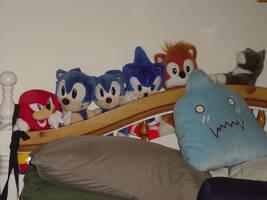 The Sonic Crew by Nabikchan