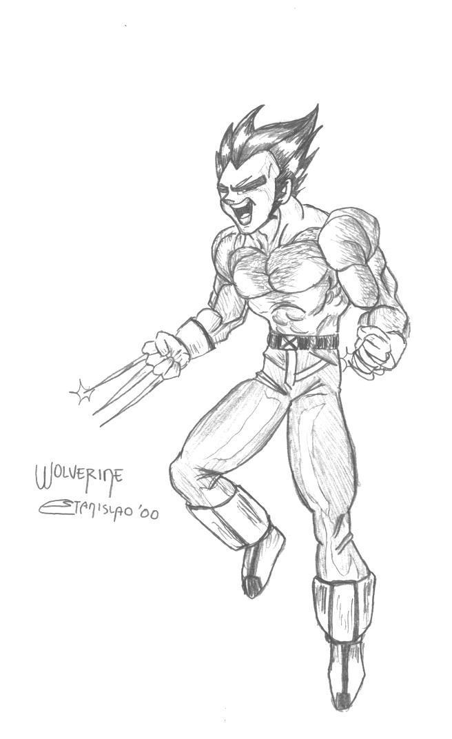 DBZ - Wolverine by stanmx