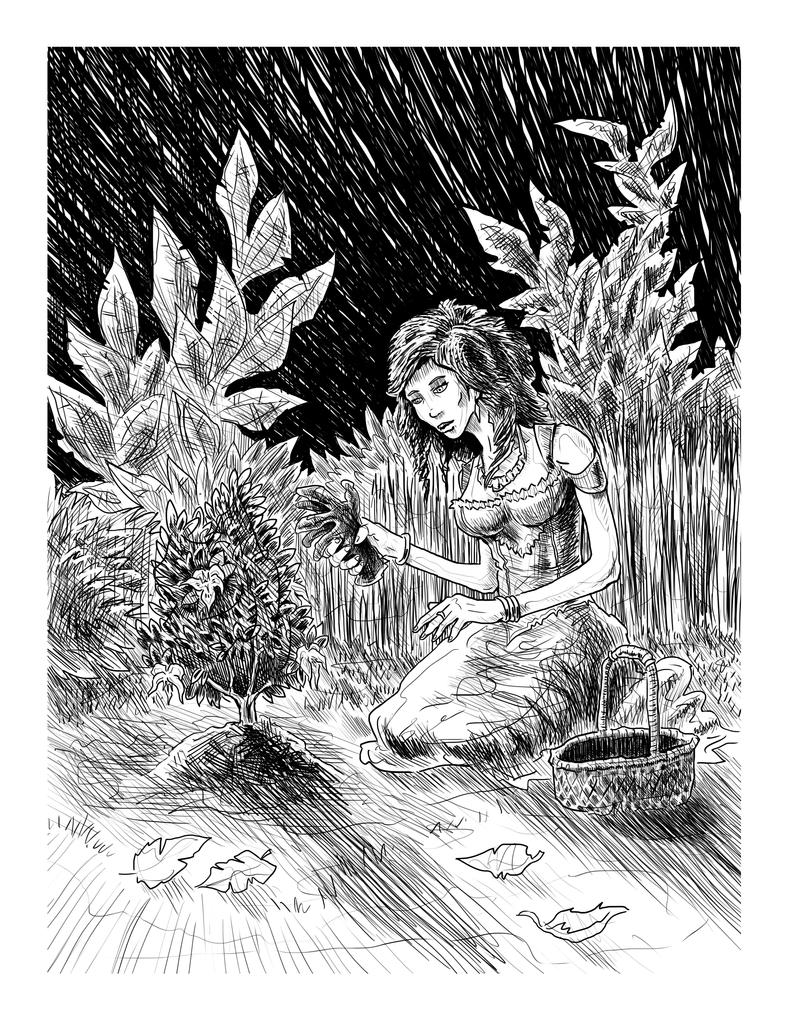 {Garden} a Travis Reynolds Illustration by ErranEntertainment