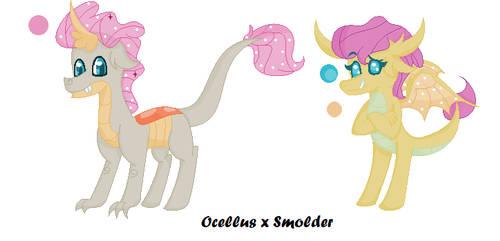 Ocellus x Smolder bbys