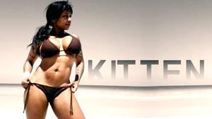 Kitten Of Solace