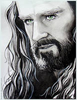 Thorin Oakenshield by Feyjane
