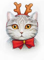 New Year Cat by Feyjane