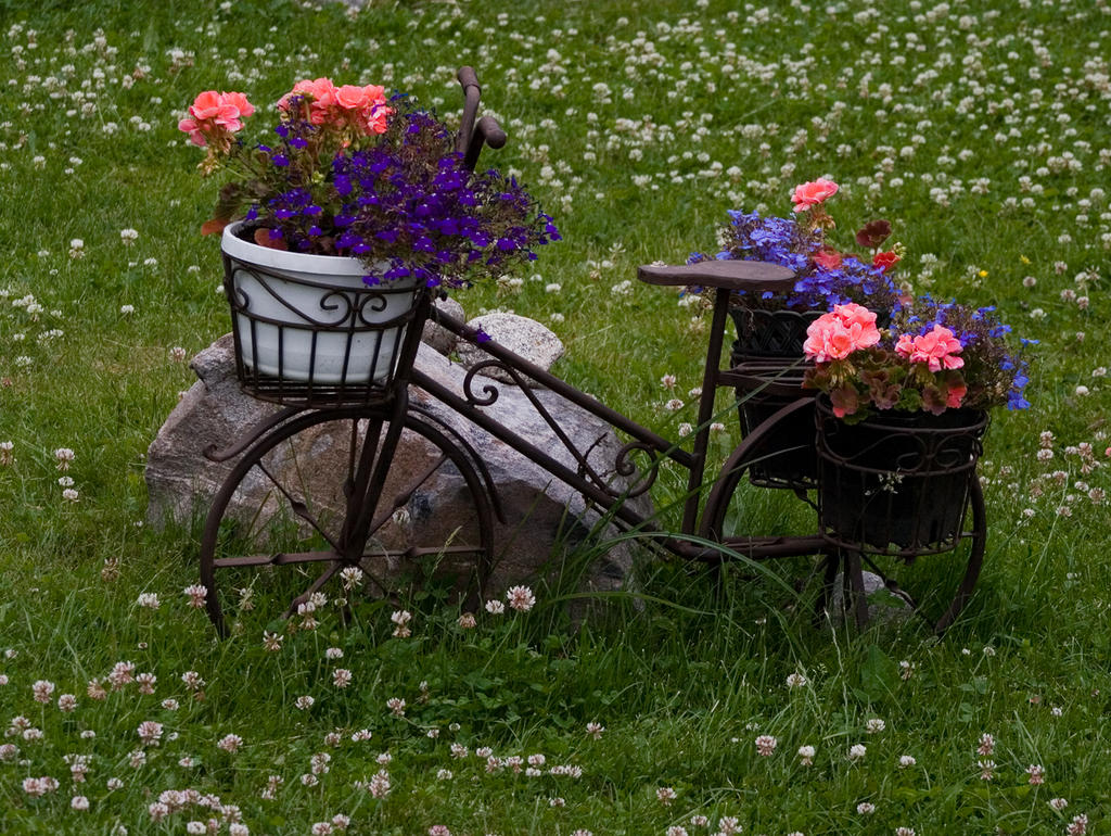 Garden Bicycle By TomiTapio ...