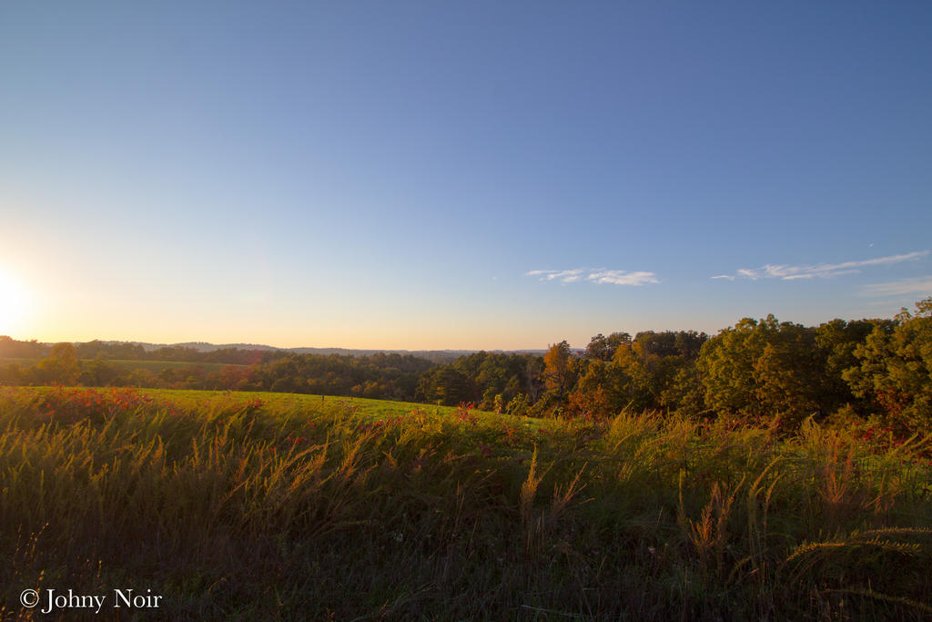 Late Afternoon Pasture by JohnyNoir