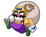 Its Wario Time