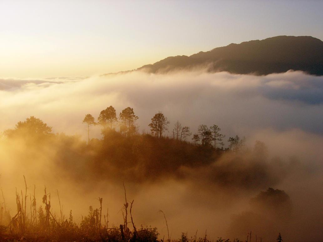 foggy mountain by fkredp