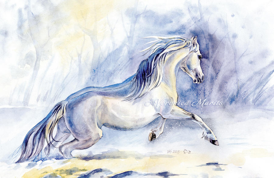 Winter poney by VeronikaFrizz