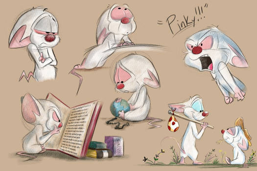 Pinky and the Brain Sketches - 10