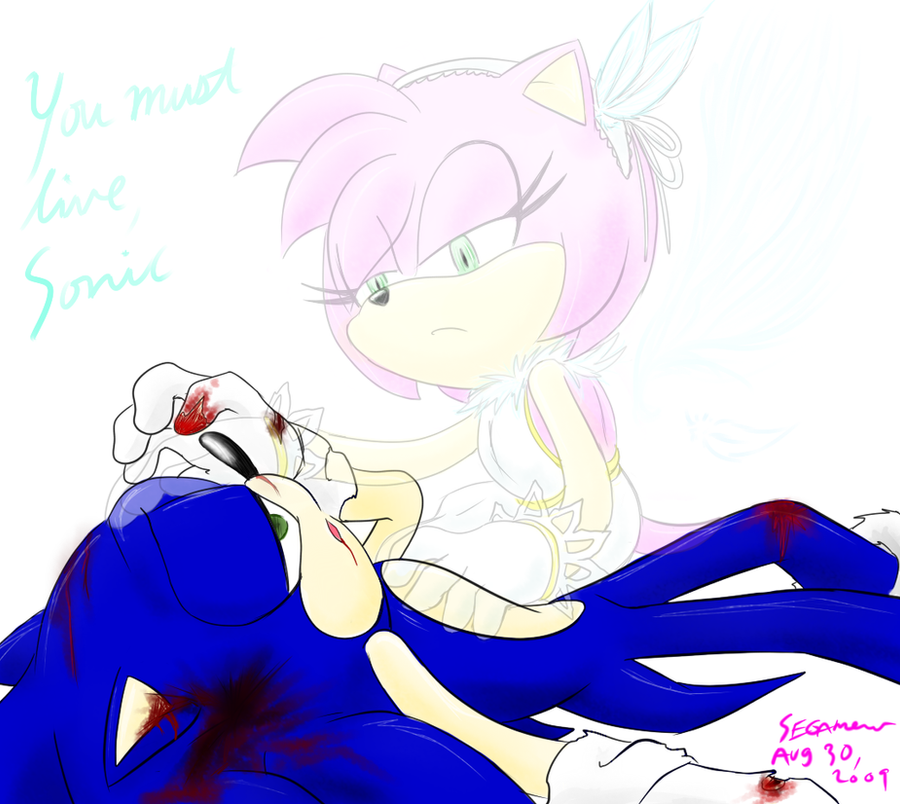 .:SonAmy:. Continue By SEGAMew On DeviantArt