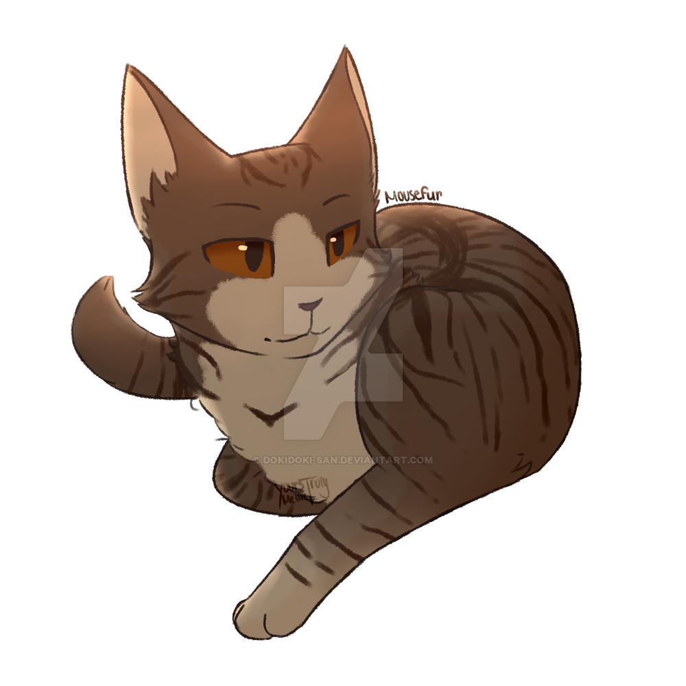 Mouse Warrior Cats