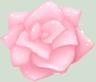Random Flower by hannahperez
