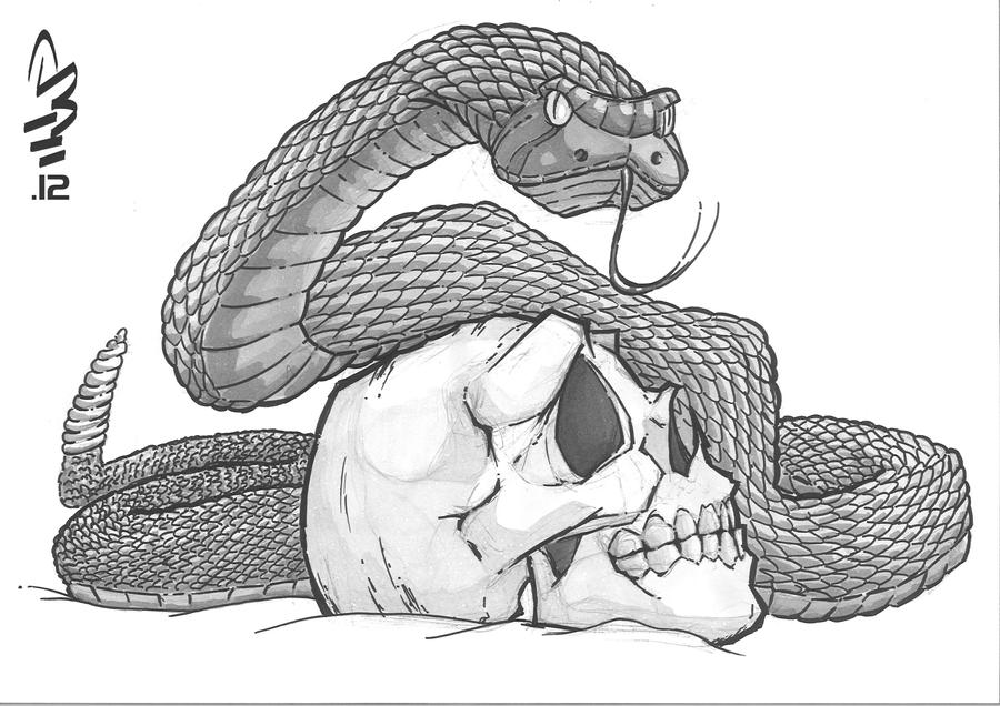 Snake And Skull By AlbertoLand O