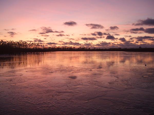 Winter 15 by Cherybone