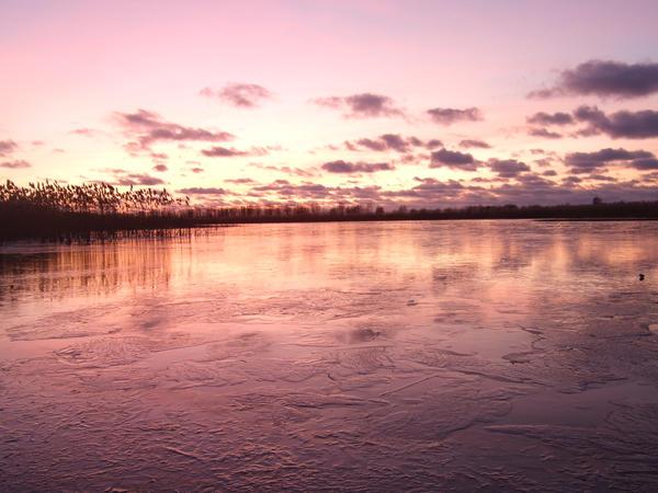 Winter 16 by Cherybone