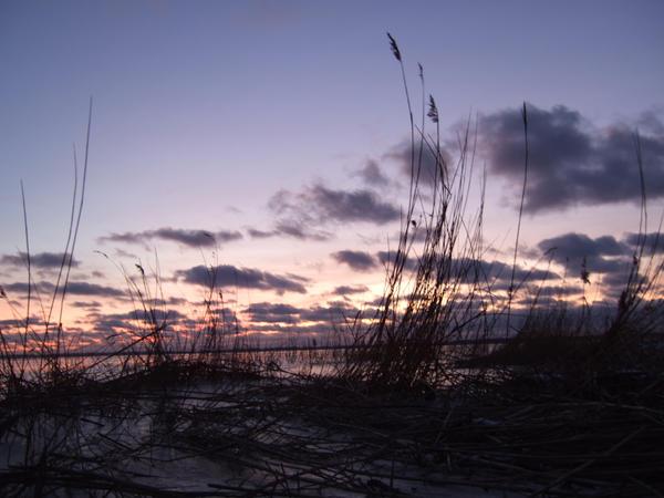 Winter 17 by Cherybone