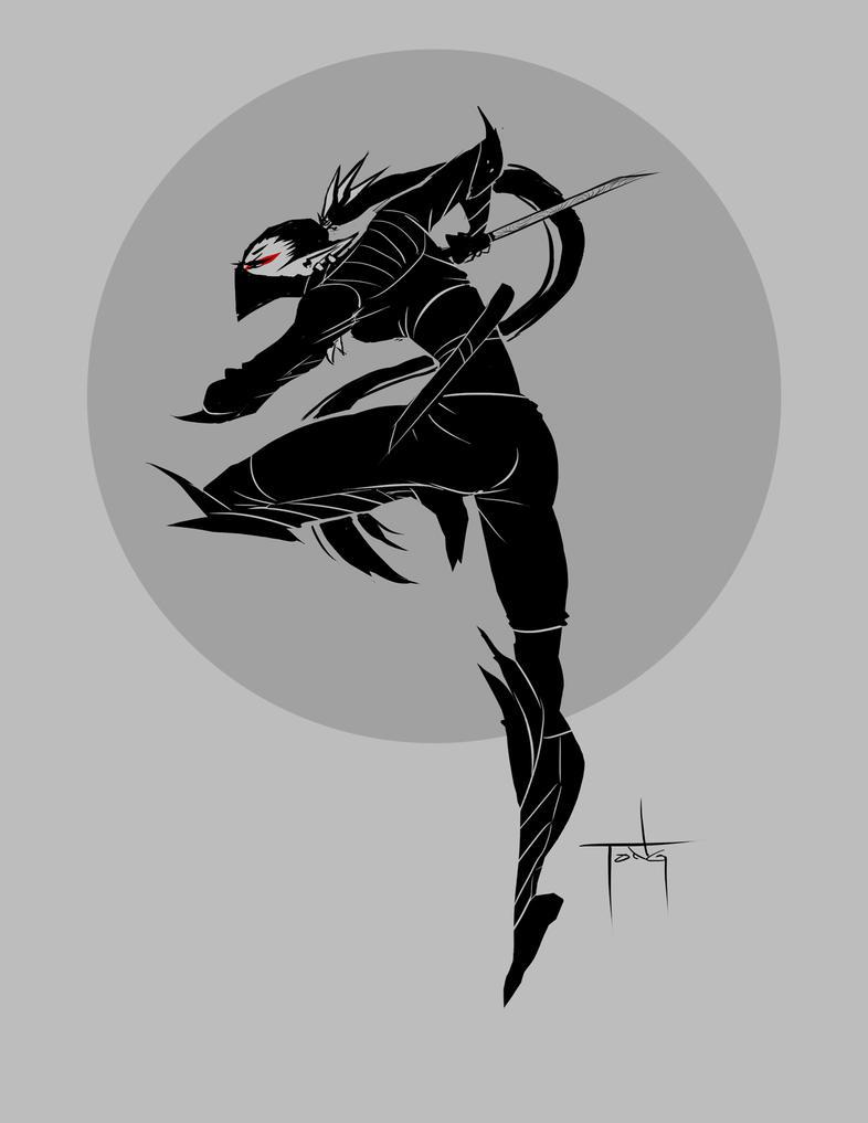 CDR - Elf Ninja by Tongman on DeviantArt