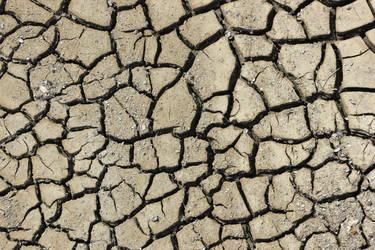 Texture Cracked ground