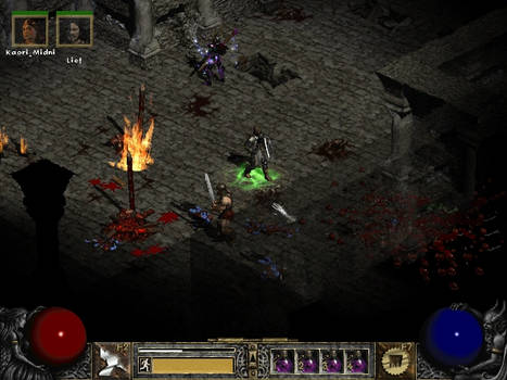 Diablo 2-The Paladin's Charge