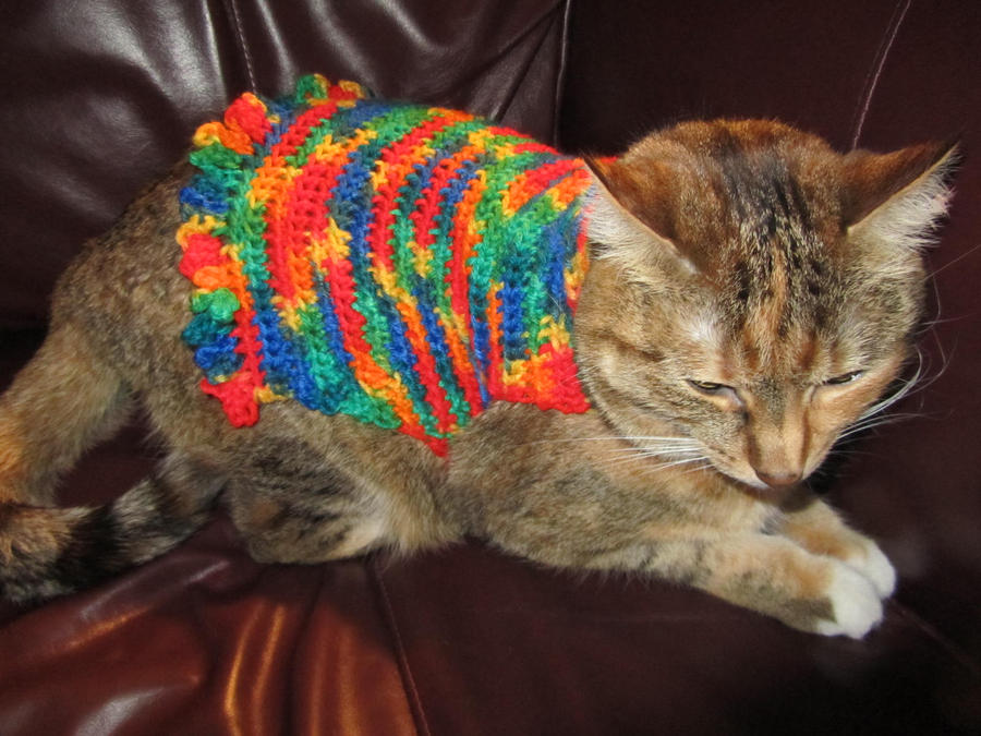 Bright Crochet Cat Sweater by SharpieObsessed