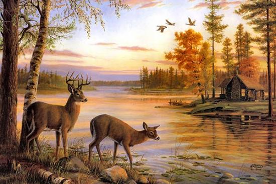 природа с животными рисунки детей