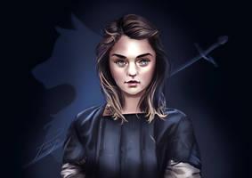 Arya Stark // Game Of Thrones by Pomelyne