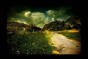 Path We Used To Walk by q3aki