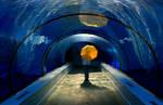 Underwater Stroll