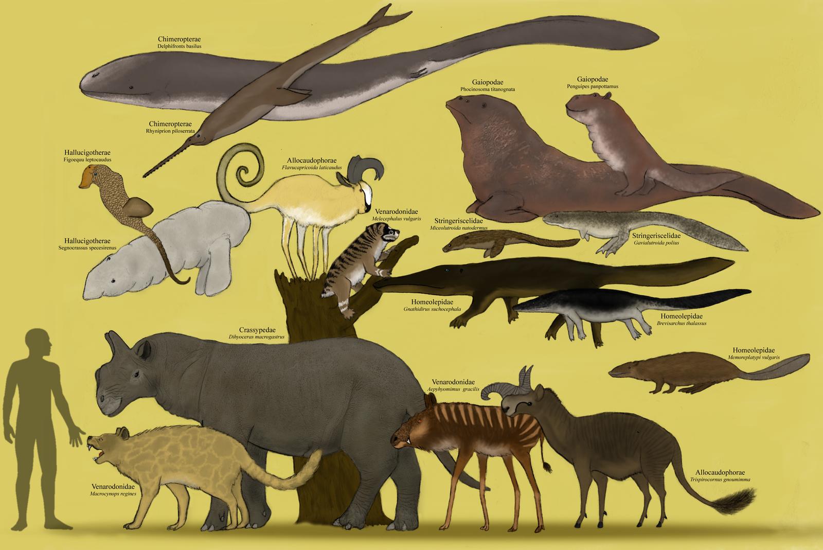 evolution of animals - HD1600×1069
