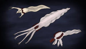 Palpomorphs, the complex beings from Europa