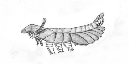 Cambrian Mars: Flamboyant Brachiocara by Dragonthunders