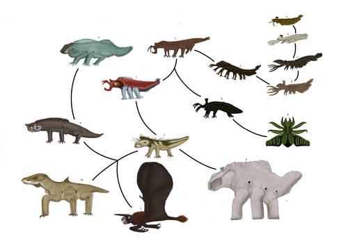Cambrian mars: Thyreocephala evolution