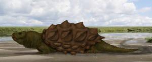 Trappertutle (Crococlemys horrida) (v2) by Dragonthunders