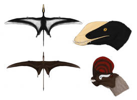 Harpactognathus and Caviramus by Dragonthunders